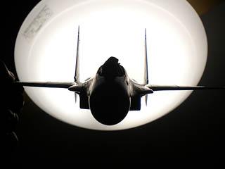 垂直尾翼補助翼シルエット確認